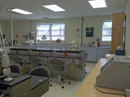 Dental assisting lab with equipment